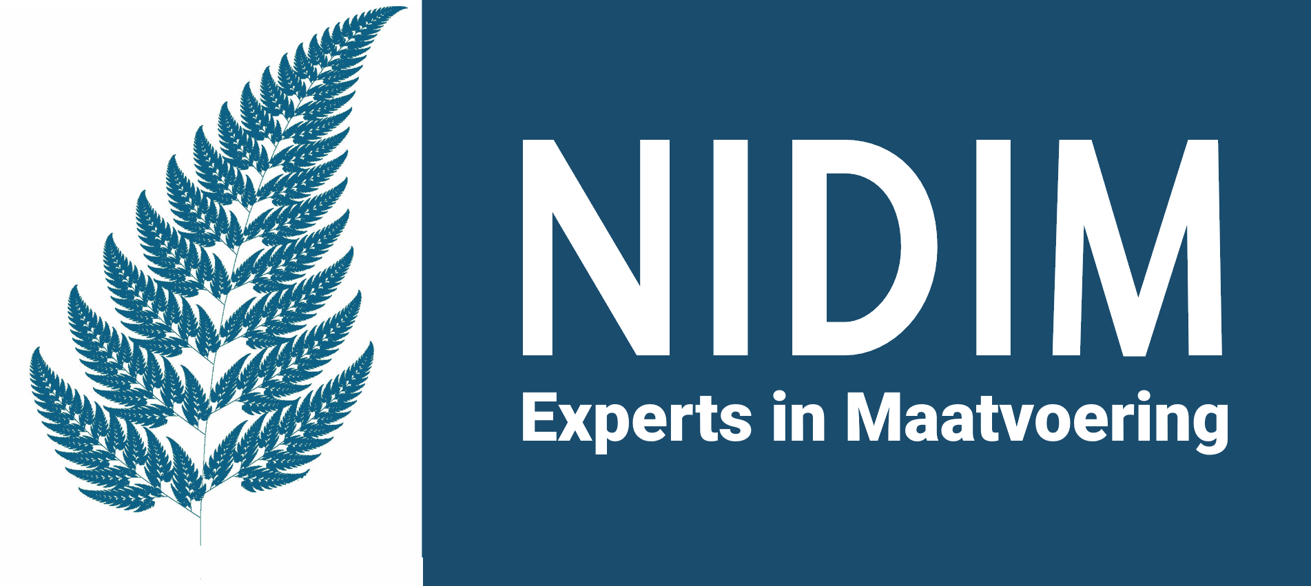 Nidim drones & surveys